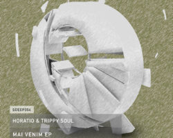 HORATIO & TRIPPY SOUL – MAI VENIM SEAMLESS RECORDS
